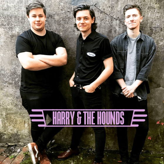 Harry & The Hounds, 17th February – 2pm onwards